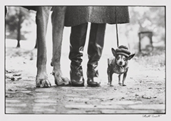 Elliott Erwitt,New York City, 1974